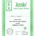 1st. Reiki